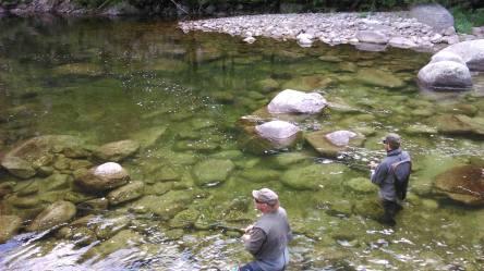 Pêche sur le Tarn