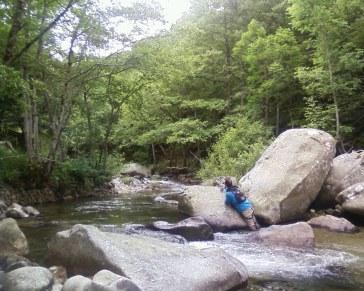 Pêche sur l'Alignon